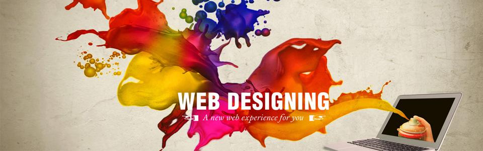 web-desigining-in-udaipur
